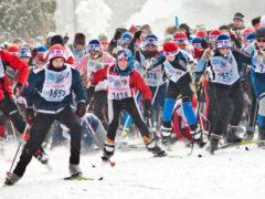 Регистрация на «Лыжню России» скоро начнётся в Архангельске
