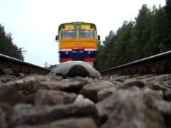 Более 50 человек погибло на объектах Северной железной дороги в 2014 году