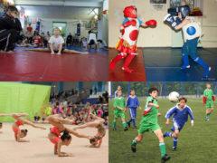 В Архангельской области зафиксирован бум спортивных НКО